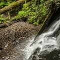 Unnamed 8-foot waterfall on the Paradise Point Hiking Trail System.- Paradise Point Hiking Trail System