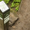 Mount Talbert Nature Park.- Mount Talbert Nature Park