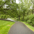 Paved trail adjacent to North Clackamas Aquatic Center in Three Creeks Natural Area.- Three Creeks Natural Area