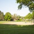 The baseball field in Peninsula Park.- Peninsula Park