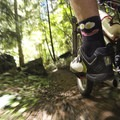 Dropping into the Eugene to Crest Trail after many miles of climbing on gravel roads.- Salmon Creek  + Heckletooth Loop