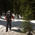 Starting up the trail in the spring means packing snowshoes.- Crystal Crag