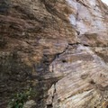 "The park is home to a ""slickenside"" chert rock wall that allows limited climbing.- Corona Heights Park"