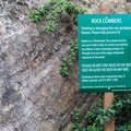 Rock climbing is allowed by permit only.- Corona Heights Park
