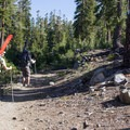 Hiking the Brewer Creek Trail to snowline.- Mount Shasta: Hotlum-Wintun Ridge