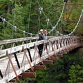 Devil's Creek Footbridge along the East Bank Trail.- Ross Lake via Diablo Lake