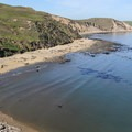 The haul-out beach is home to an elephant seal breeding colony.- Elephant Seal Overlook