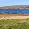 Beaches entice swimmers to take a dip.- Tomales Bay State Park
