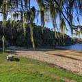 Tomales Bay State Park.- Tomales Bay State Park