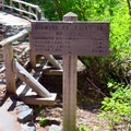 The trailhead for Diamond Creek Falls.- Diamond Creek Falls