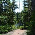 Too Much Bear Lake.- Diamond Creek Falls