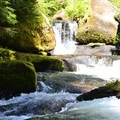 Diamond Creek at base of the falls.- Diamond Creek Falls