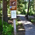 The trailhead from south end of parking lot.- Diamond Creek Falls
