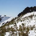 The summit block on Red Lake Peak.- Red Lake Peak: Crater Lake Descent