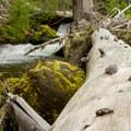 Coldwater Creek.- Sheep Canyon