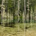 Blue Lake.- Sheep Canyon
