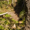 A small footbridge leads to a camp.- Sheep Canyon