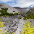 Toutle River Canyon toward Mount St. Helens.- Sheep Canyon