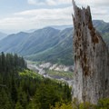 An upper view of the Toutle River Canyon.- Sheep Canyon