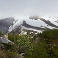 Clouds moving over Mount St. Helens.- Sheep Canyon
