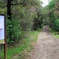 The Marble Falls Trail begins at Potwisha.- Potwisha Campground