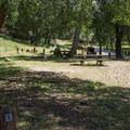 Live Oak Campground.- Live Oak Campground