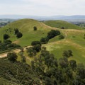 Fire roads criss-cross the slopes of Mount Diablo and serve as prime mountain biking trails.- Mount Diablo State Park