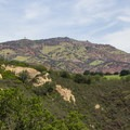 Looking up toward Mount Diablo's summit from the Rock City Area.- Mount Diablo Summit