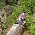 A section of the trail crosses a large windfall area.- South Breitenbush Gorge National Recreation Trail