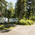 Dash Point State Park Campground.- Dash Point State Park