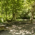 Group campsite at Dash Point State Park Campground.- Dash Point State Park Campground