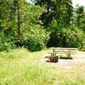 Typical campsite in Dash Point State Park Campground.- Dash Point State Park Campground