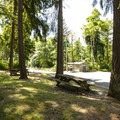 Day use picnic area at Dash Point State Park Campground.- Dash Point State Park Campground