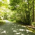 Dumas Bay Sanctuary trail.- Dumas Bay Wildlife Sanctuary