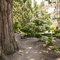 Point Defiance Park Japanese Garden.- Point Defiance Park