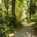 Point Defiance Park Rhododendron Garden.- Point Defiance Park