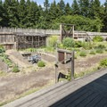 Fort Nisqually vegetable garden.- Fort Nisqually Living History Museum
