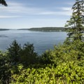 View of Puget Sound's Dalco Passage from Point Defiance Outside Loop Trail.- Point Defiance Outside Loop Trail