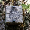 Timbeline Trail No. 600 intersects the venerable Pacific Crest Trail.- Muddy Fork