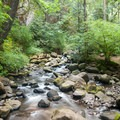 The trail runs along Multnomah Creek above Multnomah Falls.- Larch Mountain Trail