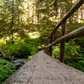 One of the bridges over Multnomah Creek on the lower portion of the Larch Mountain Trail.- Larch Mountain Trail