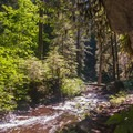 Hiking along Multnomah Creek on the Larch Mountain Trail.- Larch Mountain Trail