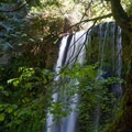 Ecola Falls.- Larch Mountain Trail
