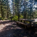 A picnic area with many shaded picnic tables at Sherrard Point.- Larch Mountain, Sherrard Point