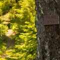 The Fish Creek Mountain Trail.- Fish Creek Mountain