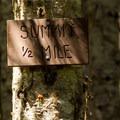 Summit sign on Fish Creek Mountain.- Fish Creek Mountain