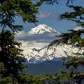 Mount Hood (11,249') from Fish Creek Mountain.- Fish Creek Mountain