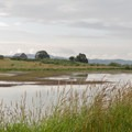 This is one of the larger ponds in the Fisher Butte Unit.- Fern Ridge Wildlife Area, Fisher Butte Unit