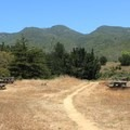 Picnic area at McNee Ranch, just off Old Pedro Mountain Road.- Old Pedro Mountain Road
