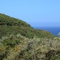 Gray Whale Cove Trail.- Gray Whale Cove Trail